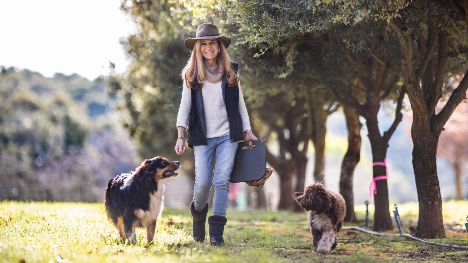 why-truffle-hunting-dogs-are-loved-by-chefs-and-foodies