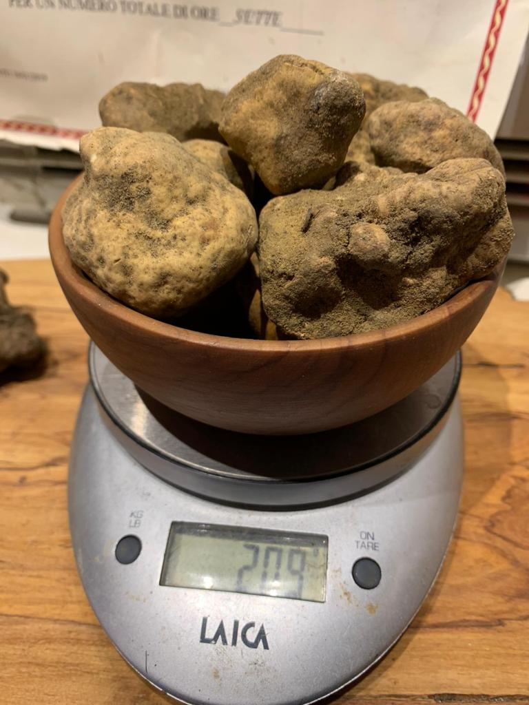 hurry-up!-the-finest-fresh-white-truffles-from-italy.-only-limited-amount-available!-buy-now!