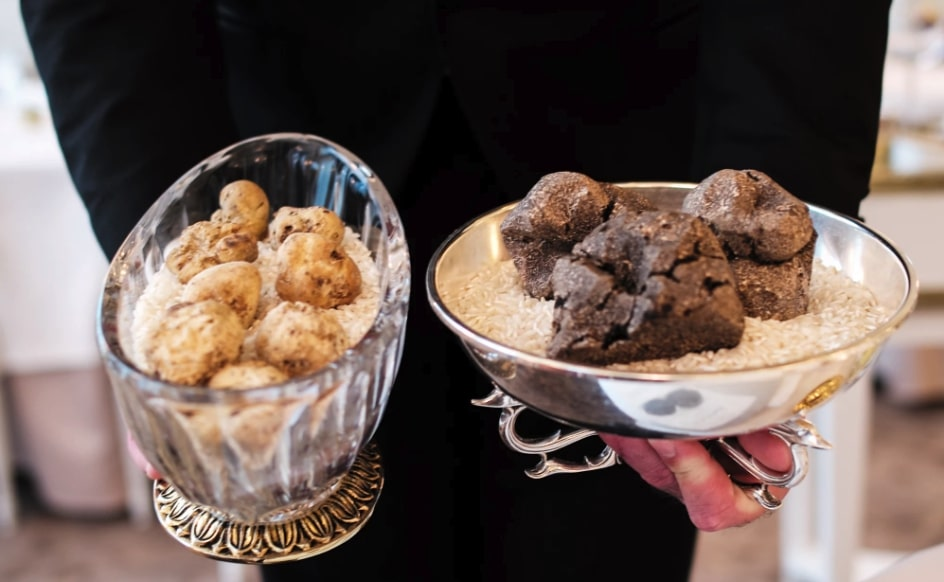 what-are-the-differences-between-black-and-white-truffles?
