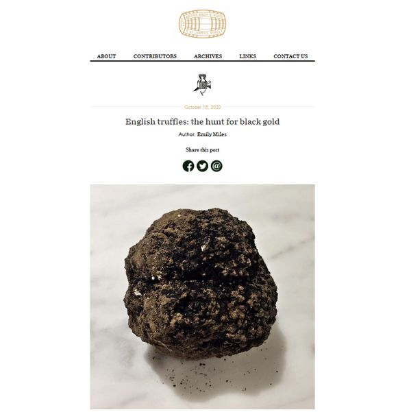 """leading-wine-merchant's-blog-features-us-–-""""english-truffles:-the-hunt-for-black-gold"""""""