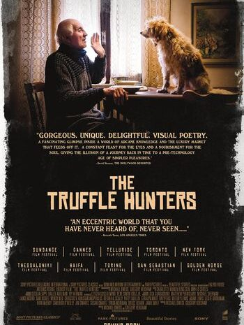 the-truffle-hunters-film-–-the-wait-is-nearly-over!
